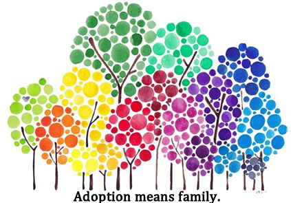 Foster Care   Parents of Color Seek Newborn to Adopt