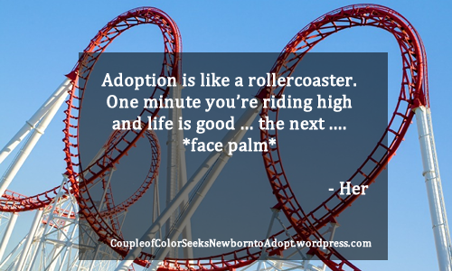 Rollercoaster-Facepalm-Adoption