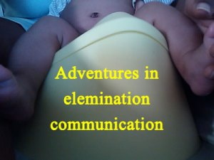 Adventures-in-the-Elemination-Communication