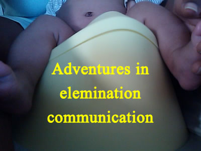 Adventures-in-the-Elemination-Communication