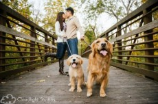 Family-Dog-Bridge