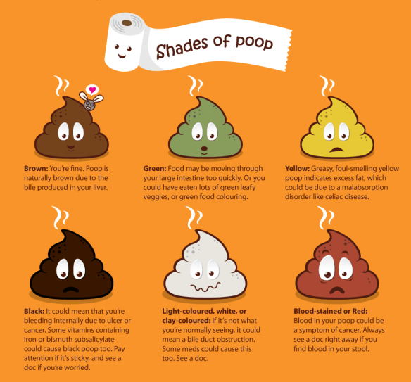 Poop-Chart-Colors-Only