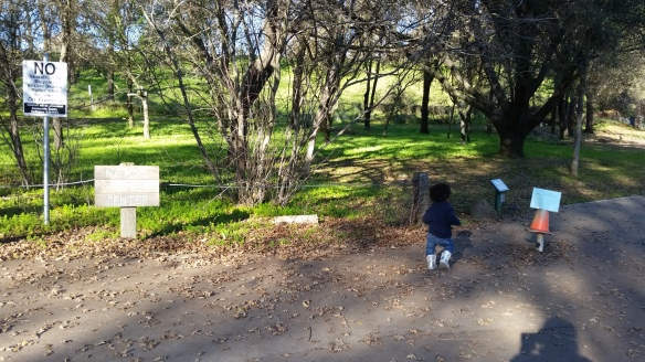 sacramento-2016-nature-preserve-sign-baby-girl-12-17-2016