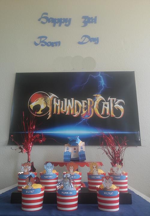Thundercats-Practice.fw