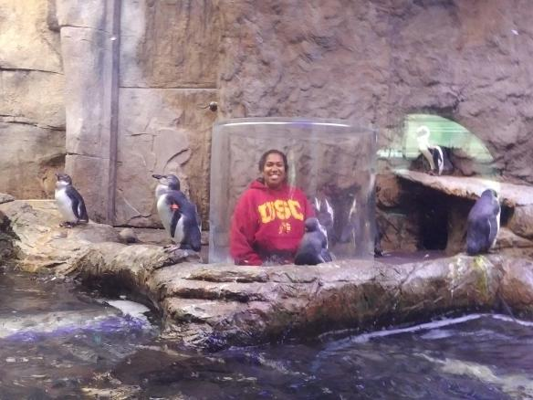 2018 TN Gatlinburg Ripleys Aquarium penguin Shay with the folks